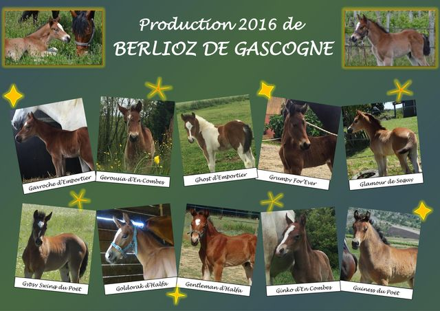 production 2016